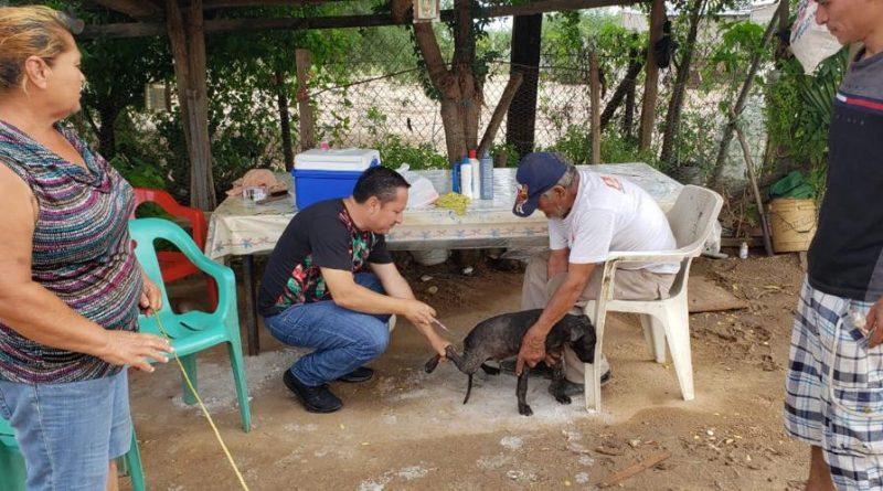 Continuará Salud Sonora con las acciones de vacunación antirrábica